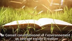 Le Conseil constitutionnel et l'environnement : un ouvrage encore à réaliser/><img src=